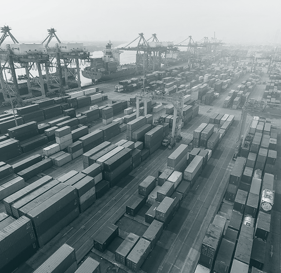 govini news article supply chain